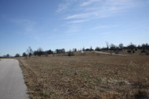 Lot #43 Old Ranch & Saddle Back Ridge Road, Harrison, AR 72601