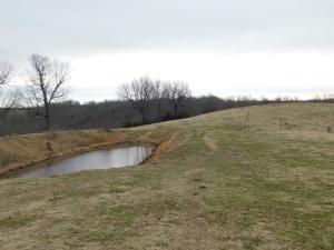 land, pond