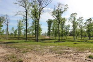 20 Acres Hwy 42, Sumrall, MS 39482