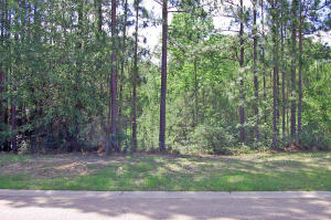 000 Broken Arrow Trail, Petal, MS 39465