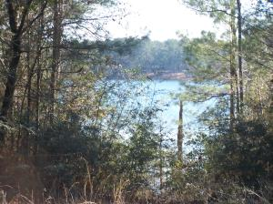 VIEW OF TRAILWOOD LAKE