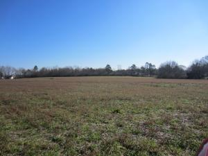 00 Highway 42(13.50 Ac), Sumrall, MS 39482