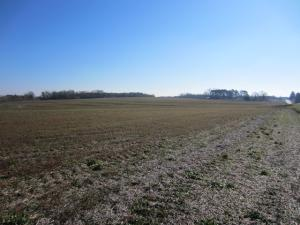 00 Highway 42 (3.62+,- Ac), Sumrall, MS 39482