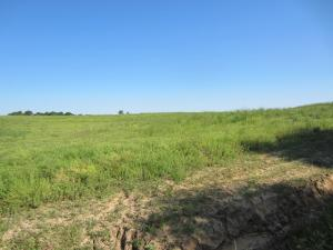 0 Highway 42- 5.79 +/- ac, Sumrall, MS 39482