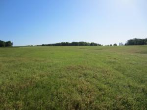 0 Highway 42- 30.95 ac, Sumrall, MS 39482