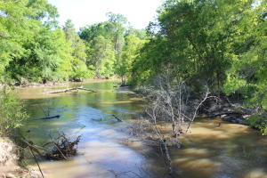 98 Acres Hwy 84, Collins, MS 39428
