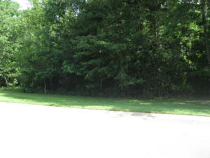 Road frontage from Backwoods Trail Road