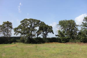 23 Acres Hwy 42, Sumrall, MS 39482