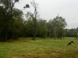 152 Dawson Cutoff, Petal, MS 39465