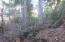 0 Cherry Hill (1.36 +/- ac) Loop, Hattiesburg, MS 39401