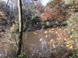 0 Cherry Hill (.63 +/- ac) Loop, Hattiesburg, MS 39401