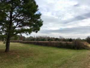 00 Cecil Fortenberry Ln., Sumrall, MS 39482