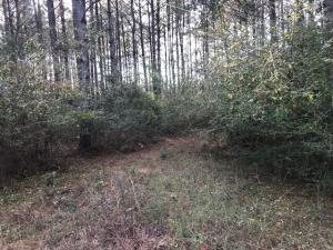 0 Foster (30 +/-) Rd., Sumrall, MS 39482