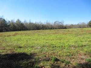 0 Military (9.94 +/- ac) Rd., Sumrall, MS 39482