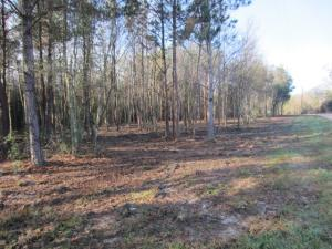 0 Military (1.11 ac +/-) Rd., Sumrall, MS 39482