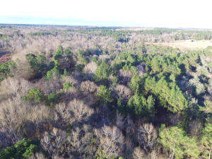 00 Old Hwy 11, Purvis, MS 39475