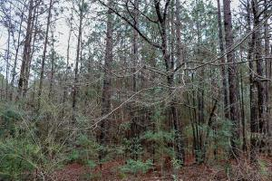 Lot E-13 Windstone, Sumrall, MS 39402