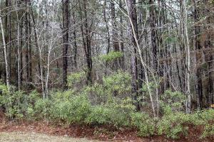 Lot E-24 Windstone, Sumrall, MS 39402