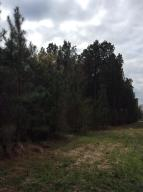0000 Old Hwy 11, Purvis, MS 39475