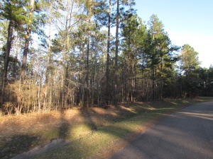 Lot D-15 Bent Pebble Point, Lumberton, MS 39455