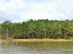 000 Alonzo Boone Rd., Purvis, MS 39475