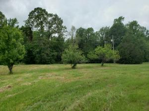 563 Scruggs Rd., Sumrall, MS 39482