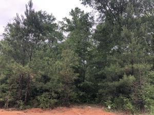 00 Red Cedar Trail, Petal, MS 39465