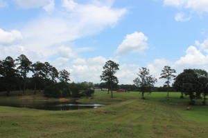 22 Acres Bethel Church Rd., Seminary, MS 39479