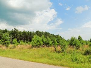 0000 Max White Rd., Purvis, MS 39475