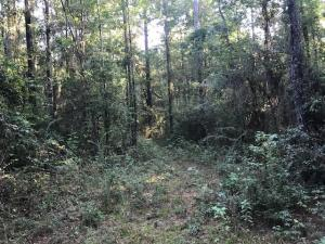 0 Rock Hill (Lot 6 & 7) Rd., Sumrall, MS 39482