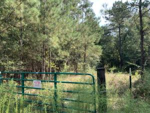 0 E Kelly Rd, Seminary, MS 39479