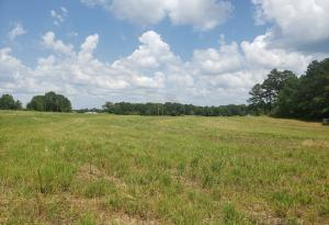621 #2 Hickory Grove Rd., Sumrall, MS 39482