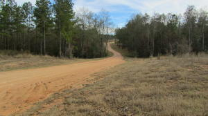 00000 Frontier Bend, Sumrall, MS 39482