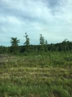 Great homesite/hunting area/get away cabin....endless possibilities