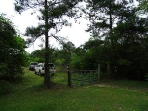 00 Holbrook Daughtrey Rd., Sumrall, MS 39482