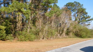 9ac Old Hwy 11, Purvis, MS 39475