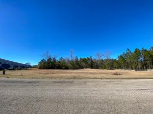 22.65 Acre Lamar Blvd., Hattiesburg, MS 39402