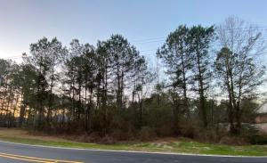 000 Scruggs Rd., Sumrall, MS 39482
