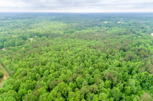 8 Acres Hwy 44, Sumrall, MS 39482