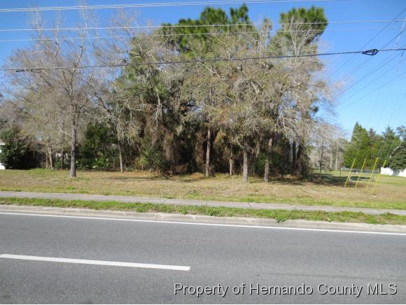 Listing photo id 2 for 0 Spring Hill Drive