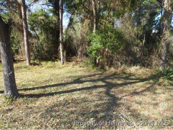 Listing photo id 3 for 0 Spring Hill Drive