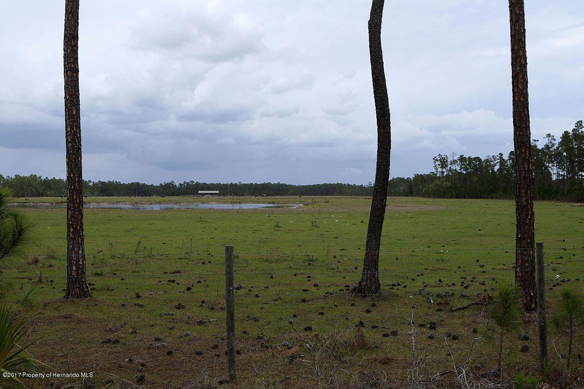 Image 5 For 100 Acres Sr 415