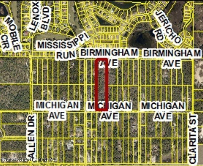 Listing Details for 0 Birmingham Avenue, Weeki Wachee, FL 34613