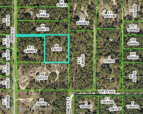 2.5 Acres Drew Street, Brooksville, FL 34604