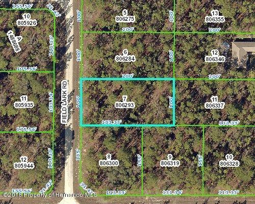 16062 Field Lark Road, Weeki Wachee, FL 34614