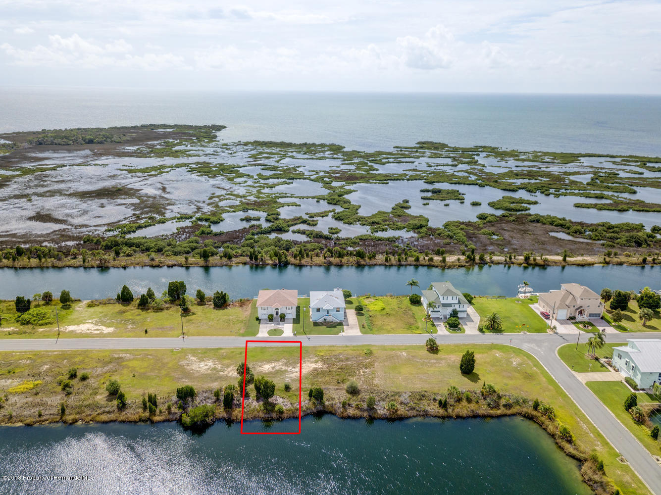 Lot 4 Lugustrum Drive, Hernando Beach, FL 34607
