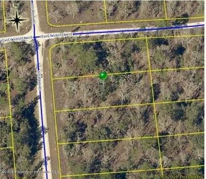 0000 Courlan Road, Weeki Wachee, FL 34614