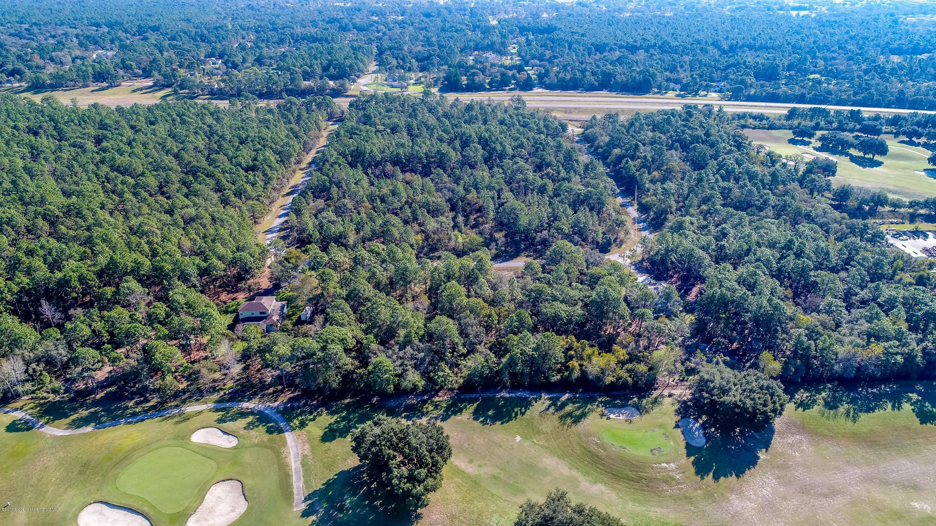 Listing photo id 16 for 0 Jumper Loop (divine Lot 10)