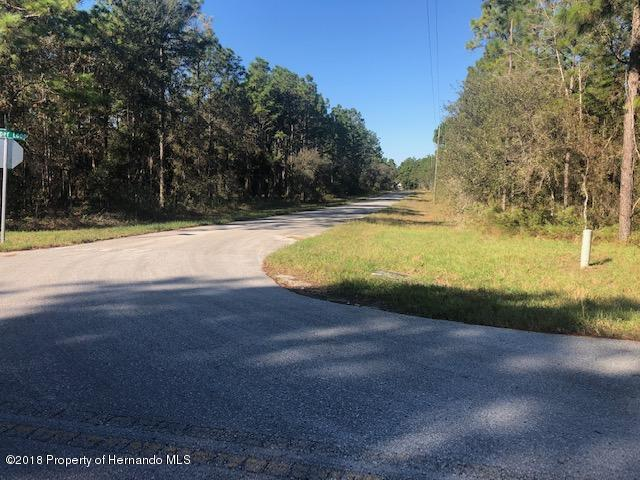 Details for 0 Jumper Loop (divine Lot 13), Brooksville, FL 34609