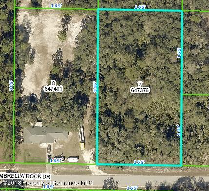 0 Umbrella Rock, Webster, FL 33597